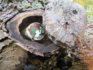 Zdroj: www.geocaching.com